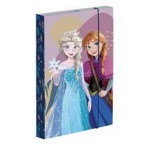Füzetbox A5, Frozen