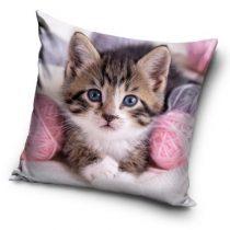 Cicás, The Cat párnahuzat 40*40 cm