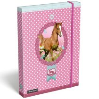 Pony Love gumis mappa - A4 - rózsaszín