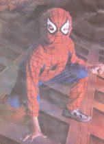Pókember jelmez